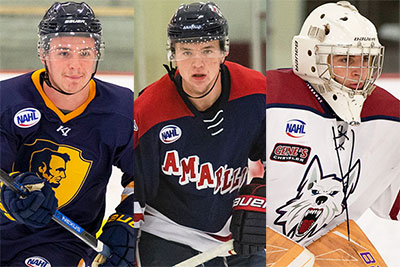 Nahl Announces Monthly Player Awards For March 2019 North American