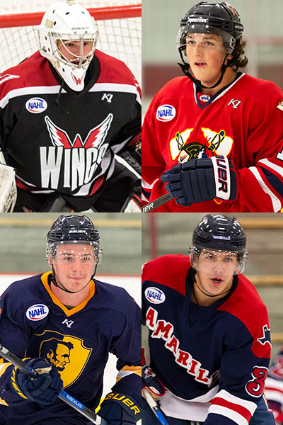 Nahl Announces 2018 19 Divisional Awards North American Hockey