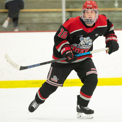 Saturday Scores Wings Tomahawks And Magicians Advance North